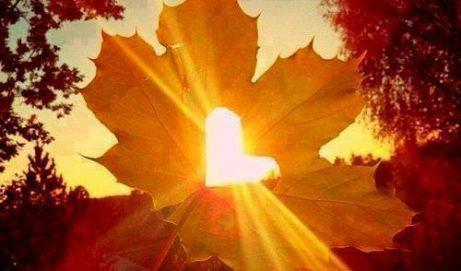 Jeudi 21 Septembre  2017 à 19 h : Accueillir l'automne : Lumière et Joie sur nos cœurs –  douceurs, senteurs et chant intuitif