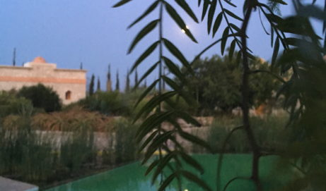30 Avril – 7 Mai 2018 La joie d'être Soi – Le chant Quantique du coeur – Douar Noujoum – Essaouira – Maroc Atlantique
